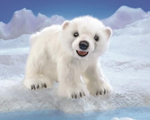 folkmanis Bear Polar Cub puppet