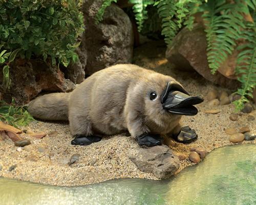 folkmanis Platypus Baby puppet