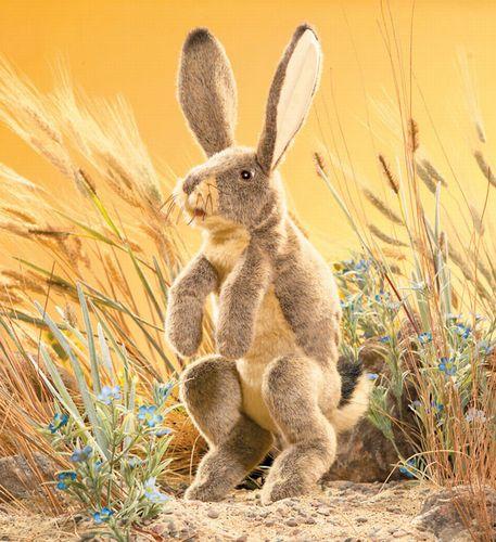 folkmanis Rabbit Jack puppet