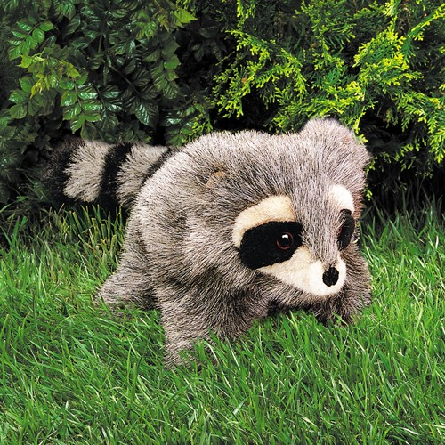 folkmanis Raccoon Baby puppet